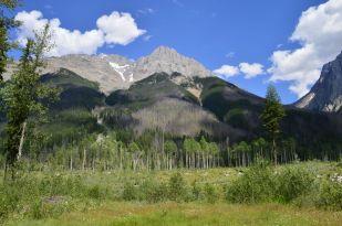 Mount Vaux